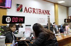 Agribank aims to maintain top commercial bank status