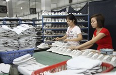 Indian, Vietnamese leather companies seek stronger ties