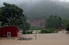 Prompt actions needed to overcome storm consequences