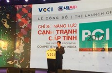 Central localities need to boost administrative reform to increase competitiveness index
