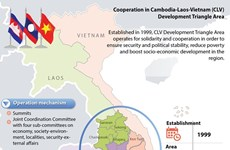 Dak Nong's implementation of CLV cooperation deals reviewed
