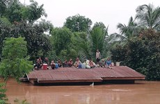 No Vietnamese citizens harmed in dam incident in Laos
