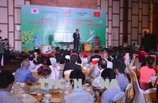 Da Nang hosts Vietnam - Japan cultural exchange festival