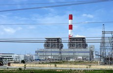 Vinh Tan 1 plant asked to halt pilot run of environment facilities