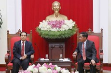 Vietnam, Laos boost cooperation in Party inspection work