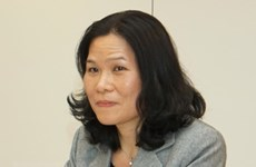 Vietnam chairs ASEAN Committee meeting in Netherlands