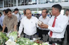 PM visits high-tech agri production model in Lam Dong