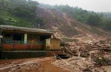 Eight killed in landslide in northern Thailand