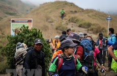 Indonesia: Over 500 climbers rescued after earthquake