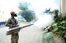 Citizens advised to apply drastic preventive measure against dengue fever