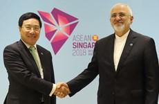 Vietnamese Deputy PM meets with top diplomats of Japan, Iran