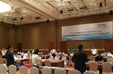 VN, Japan firms seek connection in agro-fishery, food trade