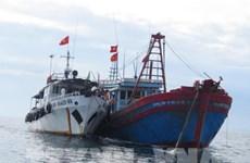 Vietnam pushes drastic measures to fight IUU fishing