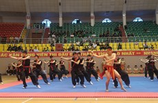 Martial arts exchange between Vietnamese, French provinces