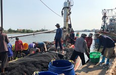 Thailand to discuss cooperation on migrant labour with neighbouring countries