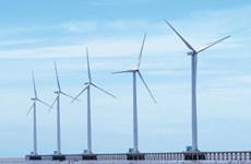 Investors eye wind power development in Soc Trang
