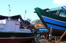 Thua Thien-Hue supports offshore fishing