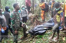 Eight killed in plane crash in Indonesia