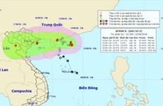 Northern, north central regions brace for storm Bebinca