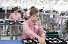 Vietnam enjoys 3 billion USD trade surplus with Hong Kong in H1
