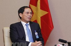 Diplomatic sector to focus on serving development: Deputy Foreign Minister