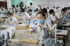Vietnam strives to avoid MFN tariffs by EAEU