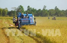 Agro businesses seek to overcome barriers to Europe