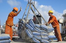Cement exports record strong growth