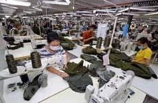 Vietnam-Czech trade enjoys 14 percent growth in H1