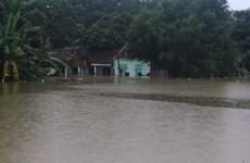 At least seven die, go missing due to storm Bebinca