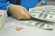 Remittances to Vietnam expand despite rise in USD price