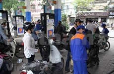 Price of petrol remains stable, diesel rises
