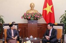 Deputy PM Pham Binh Minh hosts Lao Deputy FM