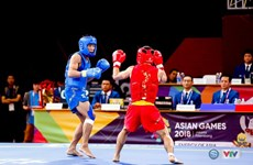 Asian Games 2018: Vietnam secures another silver in wushu