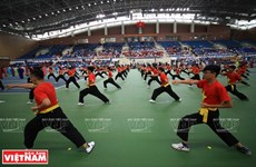 Second world championship of Vietnamese martial arts opens