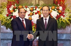 High level visits to shape basis for stronger Vietnam-Egypt ties