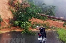 Landslide-hit Kon Tum – Laos route reopens to traffic