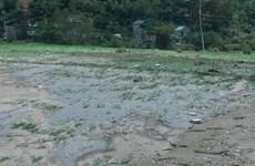 Severe torrential rains, floods hit Son La, killing four locals