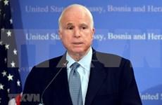 Senator McCain has special position in Vietnam-US relation history: Ambassador