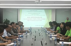 Taiwanese youths seek agricultural opportunities in Vietnam