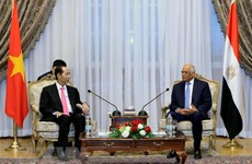 President: Vietnam maintains friendship with Egypt via different channels