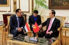 Vietnam, Egypt should bolster trade promotion: President