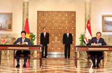 Vietnam, Egypt issue joint statement