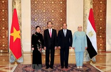President's visits to Ethiopia, Egypt create momentum for bilateral ties