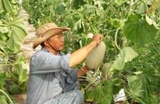 Vietnam, NZ agriculture ministers talk farm produce improvements