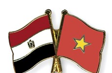 Congratulations on 55th anniversary of Vietnam-Egypt ties