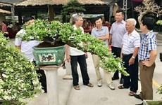 Quang Ninh has first ornamental market