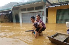 Floods leave 19 dead, missing in northern, central provinces