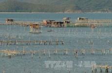 Khanh Hoa approves ambitious fishery development plan