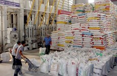 Bright prospect predicted for rice exports in Q4